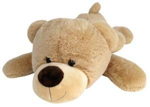 1m Teddy