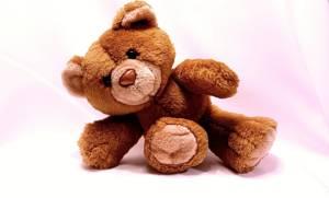 Riesen Teddy 100cm