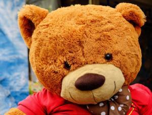 Riesen Teddy braun