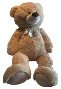 Teddy braun